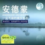 Andemund Orchestra - Self-Satisfied With Joy
