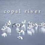 Copal River - Thanks Fred