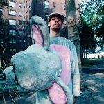 Danger Mouse & Daniele Luppi - Roman Blue