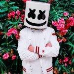 Marshmello & Ookay - Chasing Colors (feat. Noah Cyrus)
