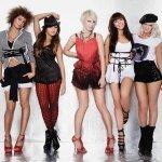 Paradiso Girls - Patron Tequila