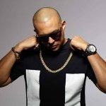 Sean Paul vs. TOO MANY ZOOZ - Get Busy (DJ HIch Edit 106 bpm)