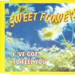 Sweet Flowers - I've Got To Feel You (Radio Mix)